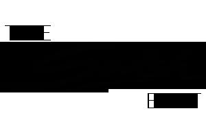 Blog Logo - theswishedit-2.png